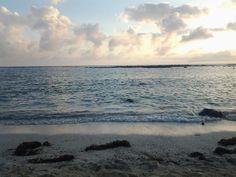 Lobería, Isla San Cristobal- Galápagos.