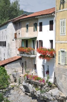 Houses with flowers, Slovenia. Pupulandia | Trendi
