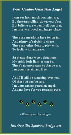 "Your Canine Guardian Angel -  . . .  Designed to promote healing & provide comfort, our site includes a visitor's area built around the sentiment ""I wish Rainbow Bridge had visiting hours.""  Pet Loss Poems"
