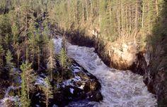 Kiutaköngäs rapid in Oulanka river, Oulanka National Park, Kuusamo, Finnish Lapland
