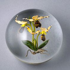 Paul Stankard Bee and Orchid Paperweight : Lot 471