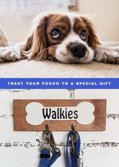 What a great way to keep your pets accessories in one place! Wooden lead holders are perfect as housewarming gifts for dog lovers. Dog Mom Gifts, Gifts For Dog Owners, Dog Lover Gifts, Dog Lovers, Lovers Gift, First Home Gifts, Bone Crafts, Presents For Men, Housewarming Gifts