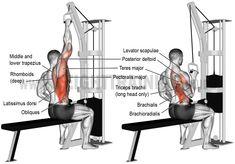 Comment effectuer le tirage horizontale unilatérale à la poulie ?