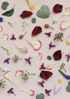 Flower Power | Photographer | SLOWFASHIONhouse.com by Rigetta Klint