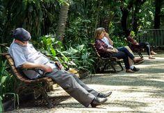 Trianon Park - São Paulo Brazil Culture, The Locals, African, World, Nice Photos, Park, The World