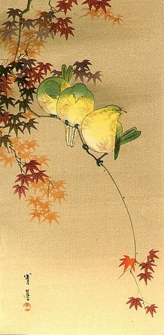 Seitei (Shotei) Watanabe 渡辺省亭 (Japan 1851-1918) Green Birds on Maple
