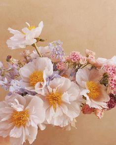 Elope Wedding, Wedding Tips, Wedding Details, Wedding Planning, No Rain No Flowers, Green Cactus, Hardy Plants, Wedding Flowers, Floral Wedding
