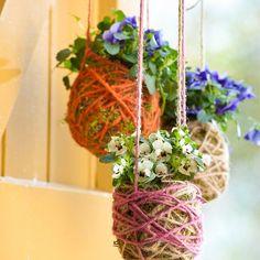 Laat je door intratuin inspireren met onze voorjaarinspiratiebeelden voorjaar bloemen - Outdoor tuin decoratie ideeen ...