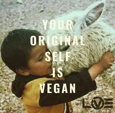 Indigo Children have a strong will to change the world and the system that controls us. Take our free Indigo Children Test to discover your score! Vegan Facts, Vegan Memes, Vegan Quotes, Why Vegan, Vegan Vegetarian, Indigo Children, Vegan Animals, Vegan Clothing, Vegan Lifestyle