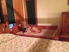 Ana White | Build a Dog bed | Free and Easy DIY Project and Furniture Plans- Griff would love this!