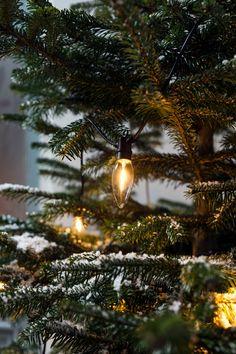 10 warm white led c9 clear bulb string lights