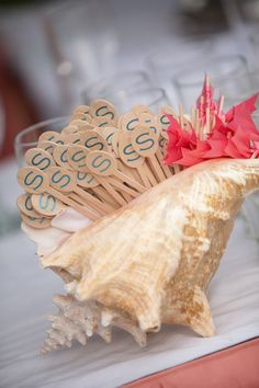 Love a giant conch shell as a holder for just about anything at a luau/beachy/tropical/nautical party.  Even flowers.