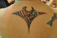 tribal manta ray tats | Cook Islands Tattoo