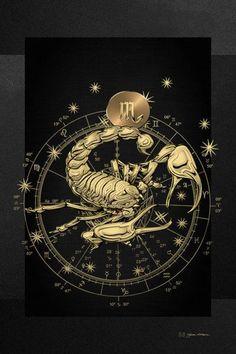 Western Zodiac - Golden Scorpio - The Scorpion On Black Canvas by Serge Averbukh, . Western Zodiac - Golden Scorpio - The Scorpion On Black Canvas by Serge Averbukh, Art Scorpio, Scorpio Zodiac Tattoos, Horoscope Tattoos, Zodiac Symbols, Zodiac Art, Art Zodiaque, Constellation Tattoos, Zodiac Constellations, Black Canvas