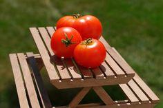 Tomatoes in the north - Поиск в Google