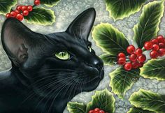 Gatti botanico