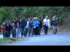 Caminhada com Maria (01/06/2013) - Parte 02 de 02 - YouTube