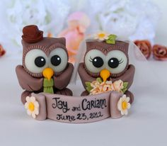 Love bird owl cake topper vintage wedding with banner, chocolate owls