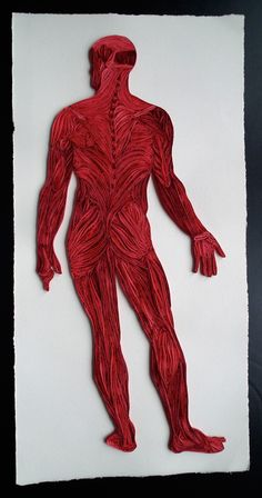 Artist Sarah Yakawonis creates beautiful quilled paper art of human anatomy. Her work is available on Etsy and Society6.