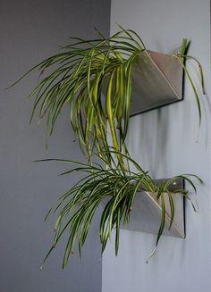 Image result for macrame hanging planter spider plant