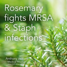 Rosemary helps fight MRSA & Staph infections Learn more about the healing powers of rosemary in Life-Changing Foods, link in profile