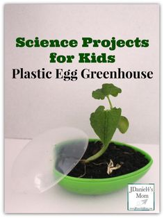 This would be a cool way to integrate Easter, spring, and a plants unit.