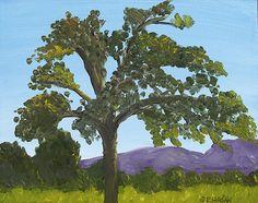 Sonoma Morning tree landscape oil painting