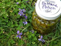 Beltane Potion 2012 by ElderberrysFaerie, via Flickr