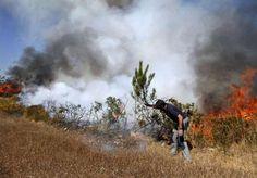Deza encara agosto con solo una veintena de efectivos en sus brigadas contra incendios http://www.rural64.com/st/turismorural/Deza-encara-agosto-con-solo-una-veintena-de-efectivos-en-sus-brigadas--6050