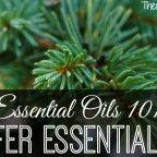 Conifer Essential Oils