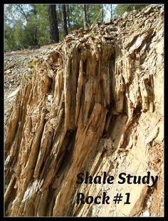 Handbook of Nature Study: Shale Nature Study - Rock Update #2