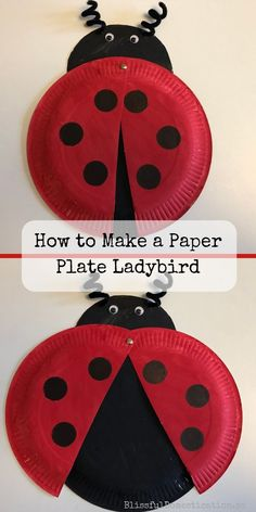 How to mkae a paper plate ladybird pin A really simple tutorial on how to make a Paper Plate Ladybird. Suitable for kids or all ages, and a great Spring/Summer activity. Paper Plate Crafts For Kids, Crafts For Kids To Make, Craft Activities For Kids, Kids Crafts, Vocabulary Activities, Summer Activities, Toddler Activities, Craft Ideas, Ladybug Crafts