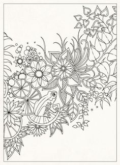 Secret Garden: 20 Postcards: Johanna Basford: 9781856699464: Amazon.com: Books: