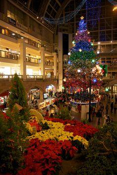 BIG christmas tree in Sapporo, Japan