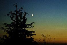 Twilight  Mt. Ranier
