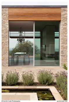 Modern glass doors -...