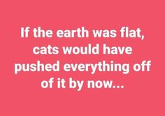 If the earth was flat, cats would have pushed everything off of it by now...