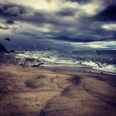 Alsio beach in Laguna Beach, CA, cloudy morning