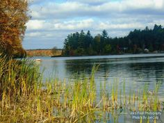 Picturesque Beauty on Isabella lake near Orrville Ontario