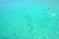 sea ocean, galapago sea
