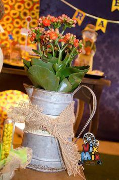 Encontrando Ideias: Festa Junina!! Maria Valentina, Farm Birthday, Picnic, Sweet Home, Table Decorations, Party, Flowers, Diy, Cultural