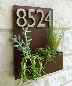 12 x 16 MidCentury Succulent Wall Planter & Address by UrbanMettle