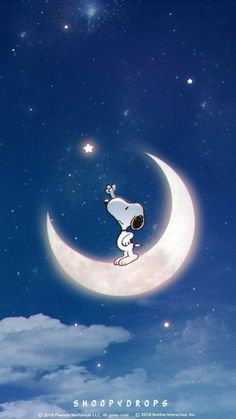 Always try to reach for the stars ⭐️✨💫 Snoopy Love, Charlie Brown And Snoopy, Snoopy And Woodstock, Snoopy Wallpaper, Disney Wallpaper, Iphone Wallpaper, Wallpaper Quotes, Snoopy Images, Snoopy Pictures
