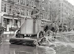 Um de dois cavalos da equipe da rua mais limpa, com pulverizador, rodo, e rolo na parte traseira.  Nova Iorque, entre ca.  1910 e ca.  1915. (Foto por NYC Arquivos Municipais)