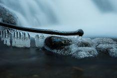 Gastbeitrag: Winterfotografie Tipps - Fashionladyloves Whale, Nature, Photography, Animals, Blog, Photos, Tips, Future, Naturaleza