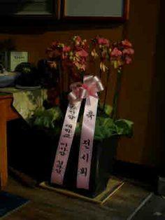 소지도인의 제부되시는 순천향병원 김부성 원장님의 축하 화분