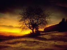 Resultado de imagem para paisagens por do sol com frases