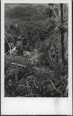 "Marines Move Through the Jungle, 1969 ""Marines of M Company, 3d Battalion, 5th Marines [M/3/5] are dwarfed by thick jungle growth as they move out on a sweep and clear mission seven miles east of An Hoa Combat Base (official USMC photo by Corporal Hank Berkowitz)."" From the Jonathan F. Abel Collection (COLL/3611) at the Archives Branch, Marine Corps History Division OFFICIAL USMC PHOTOGRAPH"