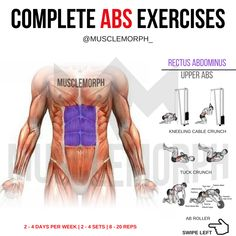 ABS WORKOUT EXERCISE 6 PACK MUSCLEMORPH MUSCLEMORPHSUPPS.COM