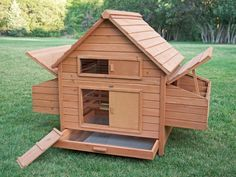 Rambler Backyard Chicken Coop